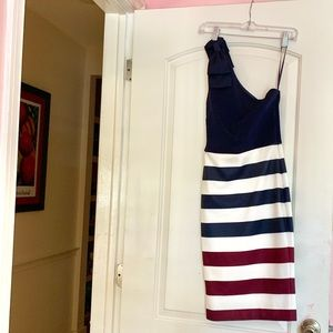 Ted Baker fitted dress